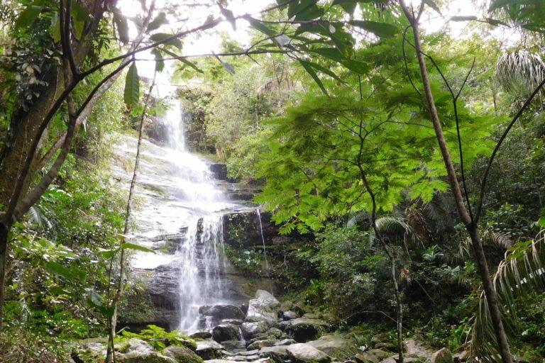 Waterfall, trees, rocks, light fall
