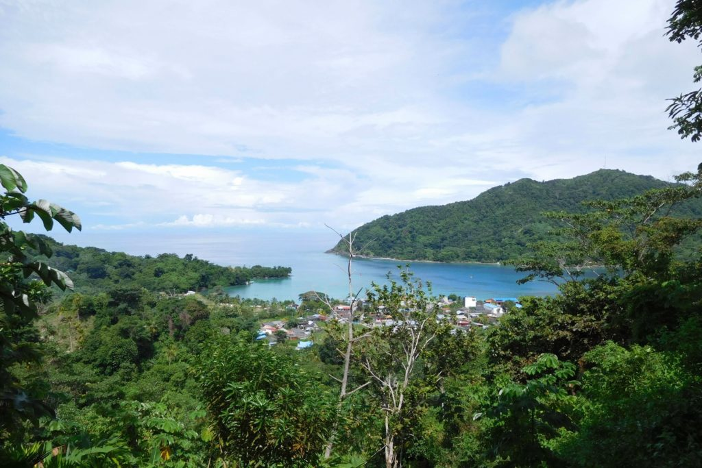 Panoramic view village with trees and ocean