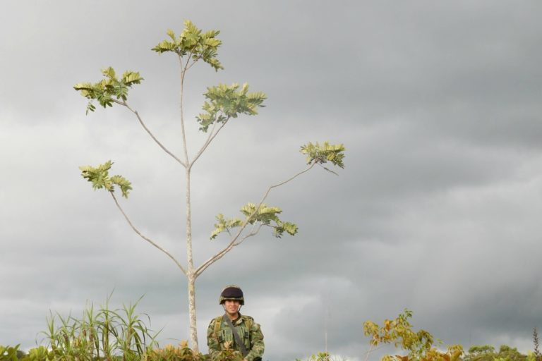 Clouds, single tree with 5 branches, soldier smiling towards camera