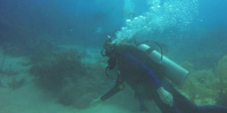 Avontuurlijk reizen duiken