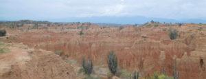 Oranje gesteente en cactussen in Tatacoa