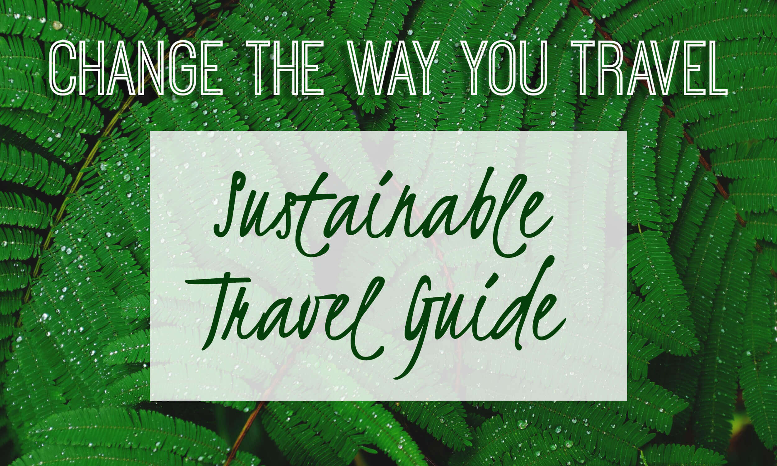 Change the way you travel by travelling more sustainably