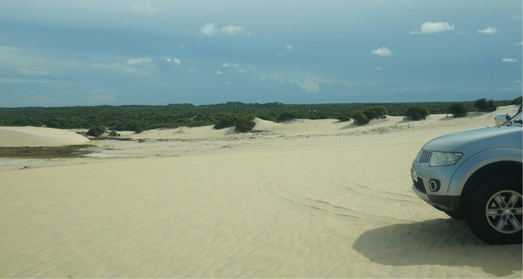 Nose of care in sand dunes in Natal