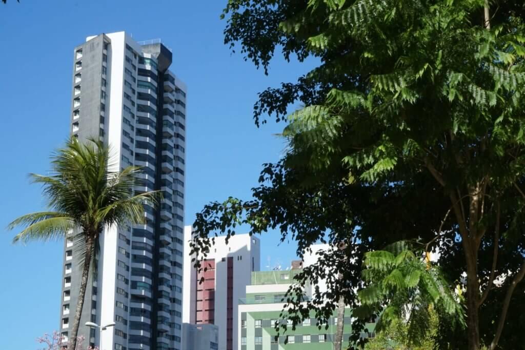 Flatgebouw met palmboom in Recife